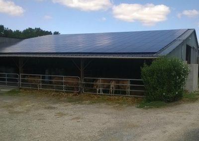Les solutions de construction et de financement de serres agricoles photovoltaïques